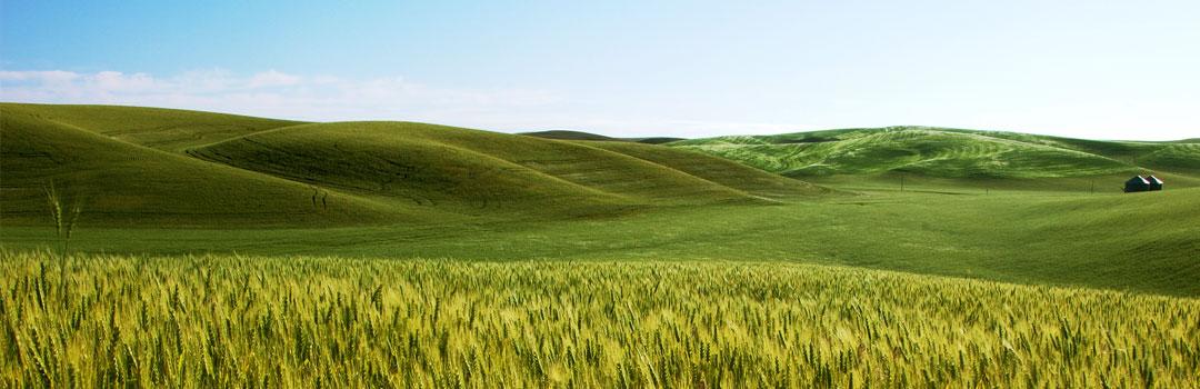 agricultura-produse-inovatoare