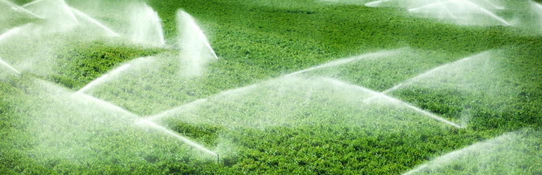 agricultura-sisteme-de-irigatii