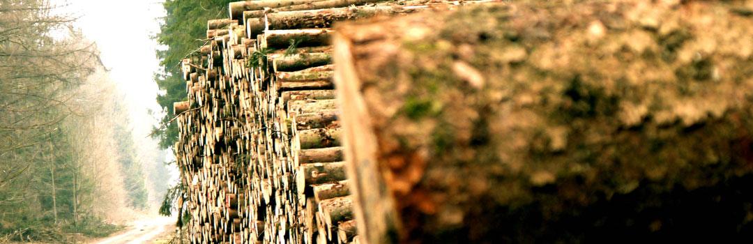 solutii-industriale-biomasa-biogaz