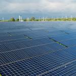 panouri-fotovoltaice-amerisolar